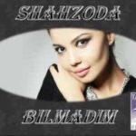 Shahzoda - Bilmadim
