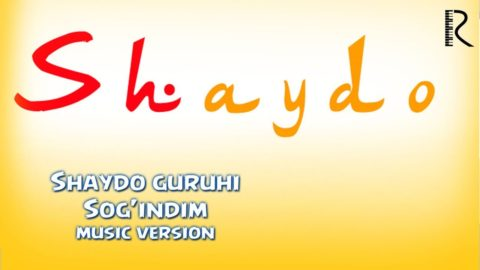 Shaydo guruhi - Sog'indim   Шайдо гурухи - Согиндим (music version)