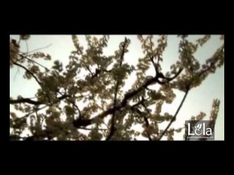 "Lola Yuldasheva - Qolaymi (soundtrack ""Voydod sumalak"")"