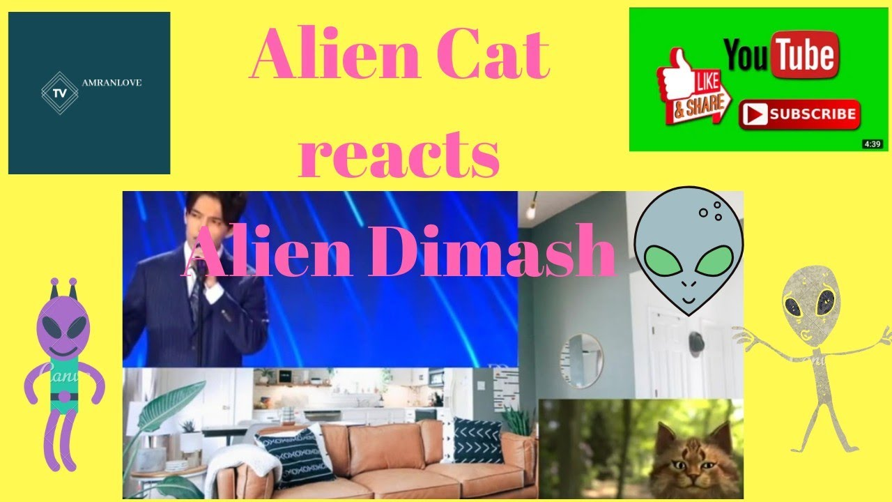 My Kiki the Cat passive first time reaction to Dimash S.O.S.
