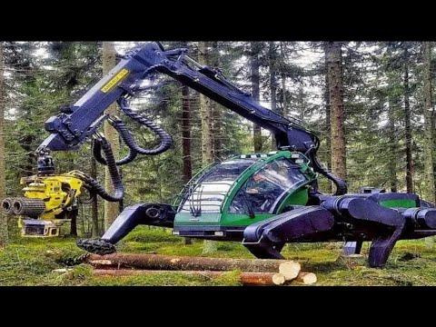 DANGEROUS FASTEST Chainsaw Cutting TREE MACHINED, Big Felling Tree Heavy Equipment Machine