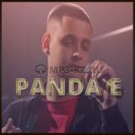 CYGO - Panda E скачать бесплатно в mp3, CYGO - Panda E текст песни