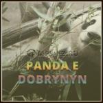 CYGO - Panda E (Dobrynin Radio Edit) скачать бесплатно в mp3, текст песни
